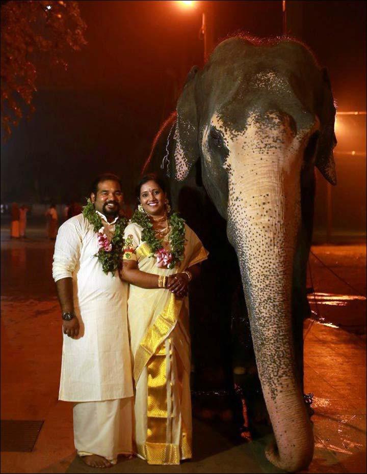 Dhoti for kerala groom