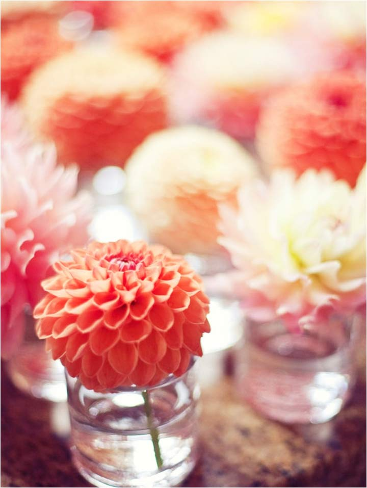 Coral Wedding Decorations - Coral Flowers In Votives