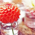 coral-wedding-decoration