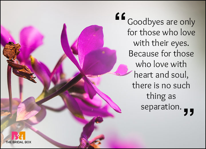 Rumi Love Quotes - No GoodByes