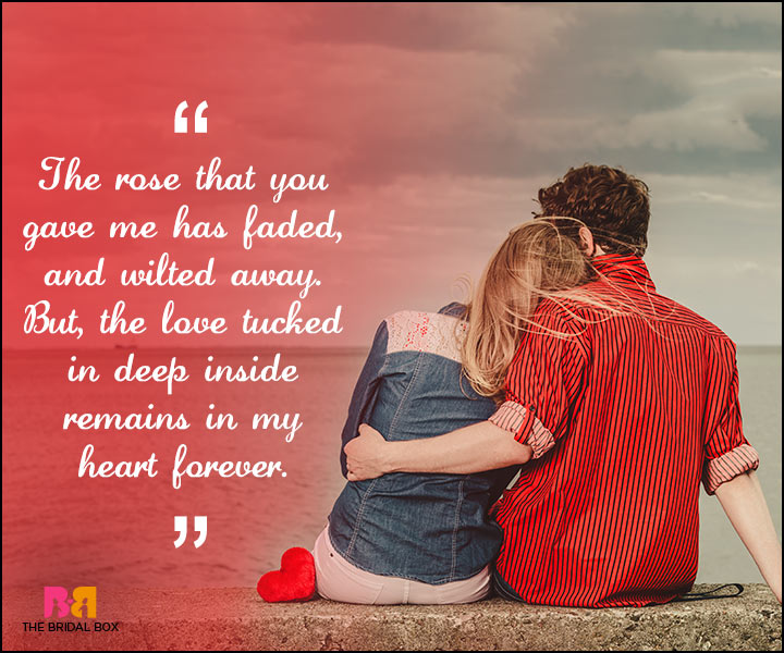 Love Forever Quotes - The Rose You Gave Me