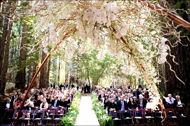 Wedding Arch Decorations - Rustic And Floral Arch