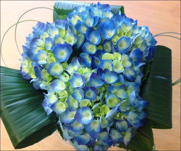 Turquoise Wedding Bouquets - Hydrangea Wedding Bouquet