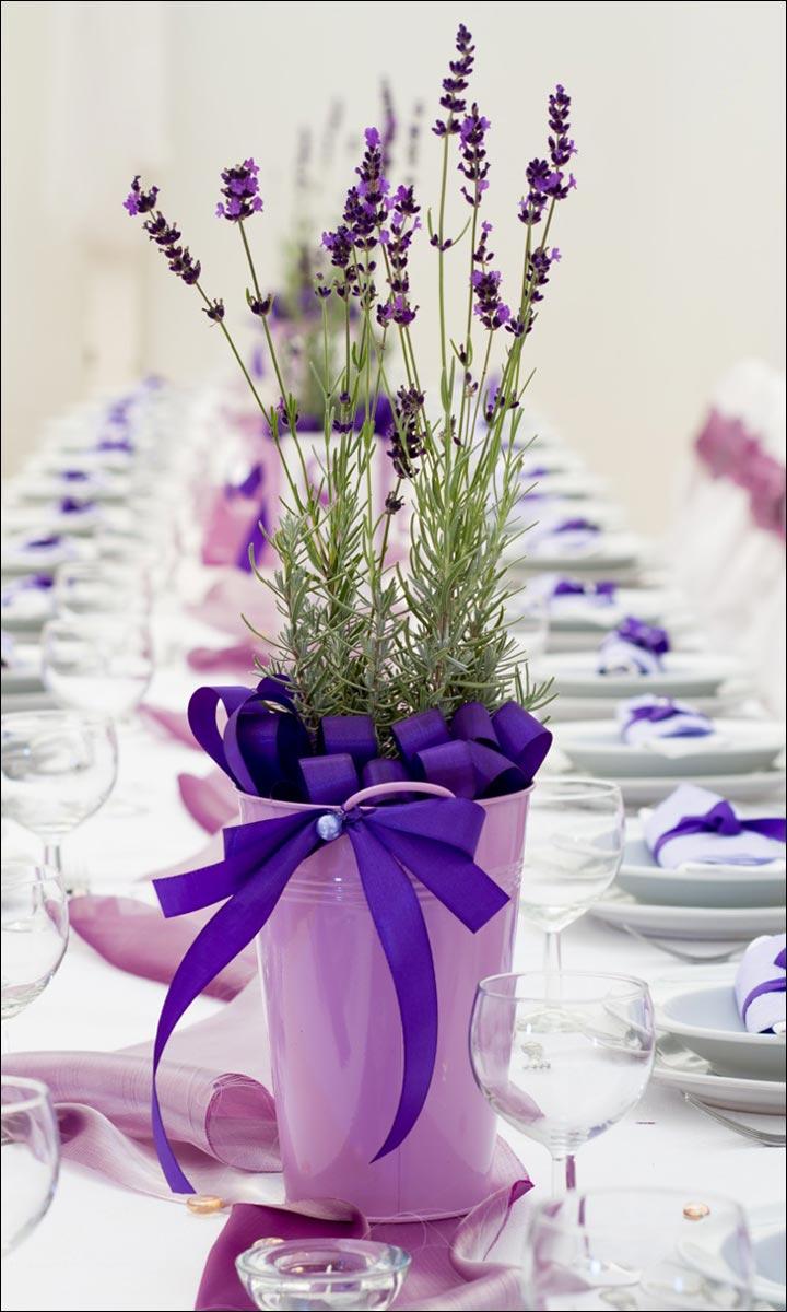 Natural-Herb-Or-Flower-Pot